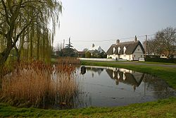 Wicken village pond - geograph.org.uk - 381093.jpg